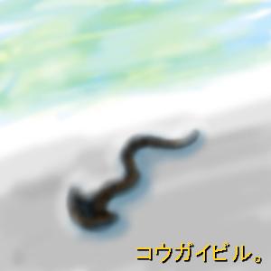 Cocolog_oekaki_2009_05_16_21_51